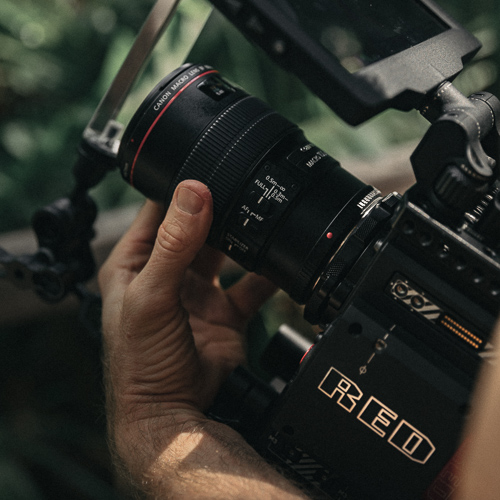 Branded Video Services